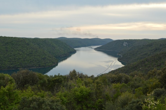 Limski Fjord