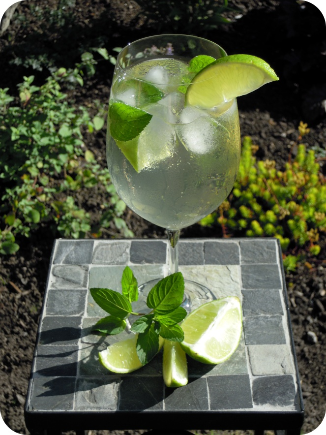 Credito de la imagen: http://wealthofhealth.ca/2012/09/14/the-hugo-cocktail/